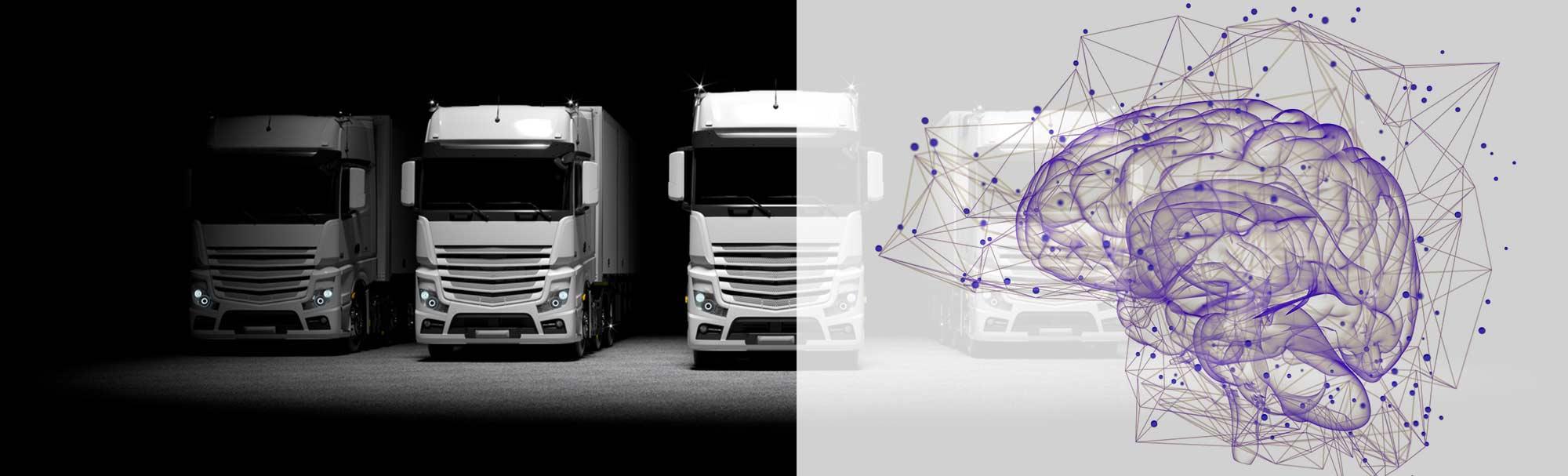ciężarówki i mózg